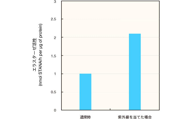 エラスターゼ活性のグラフ